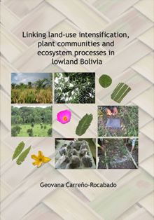 Linking land-use intensification, plant communities and ecosystem processes in lowland Bolivia